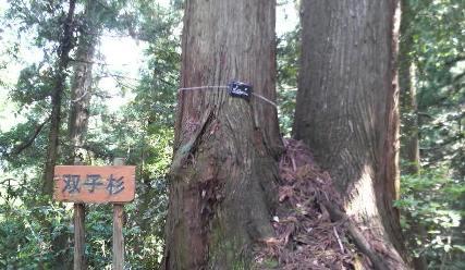 青山のぼり2.jpg
